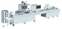 PXB420 type plate-type clamshell packaging machine